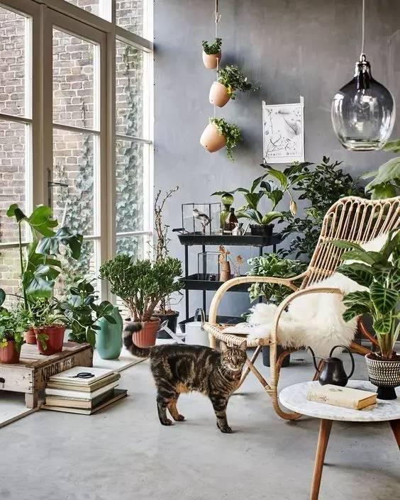oasis en casa