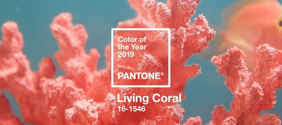 Nuevo color PANTONE 2019